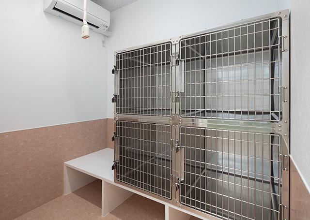 桃園動物病院 入院室